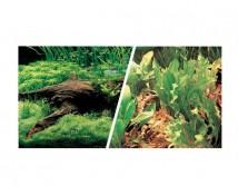 Фон двусторонний Hagen, высота 30 см (цена за 10 см)  растения и корни