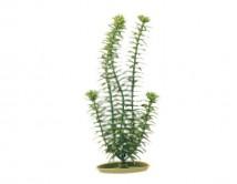 Искусственное растение Hagen Marina Anacharis  13см
