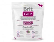 Сухой корм Brit Care Junior Large Breed с ягненком и рисом для щенков крупных и гигантских пород 1 кг