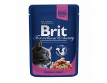 Консервы Brit Premium Cat pouch 100 г лосось и форель