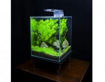 Светильник светодиодный Ptero Ray Mini 25 для аквариума объемом до 25 л