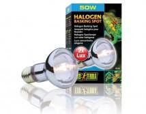 Лампа Hagen Exo Terra Halogen Basking Spot 50W галогенная Е27 для теплолюбивых рептилий