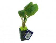 Искусственное растение Aqua Nova 25см BE2509