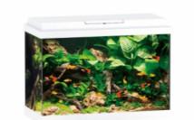 Аквариумный комплект Juwel Primo 70 LED белый, 70 литров