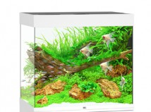 Juwel Аквариумный комплект Juwel Lido 120 LED белый, 120 литров