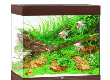 Juwel Аквариумный комплект Juwel Lido 200 LED коричневый, 200 литров