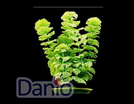 Hagen Искусственное растение Hagen Marina Ambulia 30см - Картинка 1