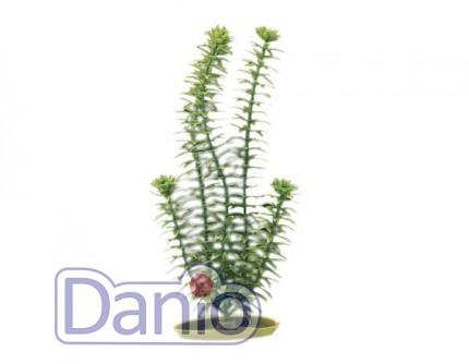 Hagen Искусственное растение Hagen Marina Anacharis 20см - Картинка 1