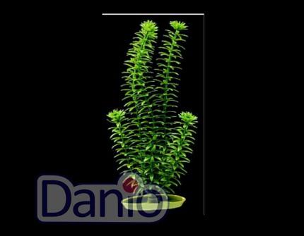 Hagen Искусственное растение Hagen Marina Anacharis 30см - Картинка 1