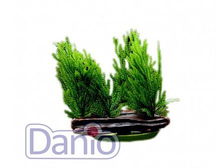 Hagen Искусственное растение Hagen Marina Willow Moss 11см - Картинка 1