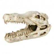 Декорация Trixie Череп крокодила 14см.