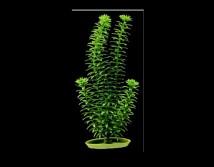 Искусственное растение Hagen Marina Anacharis 30см