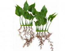 Искусственное растение Hagen Marina Anubias 15 cм