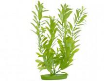 Искусственное растение Hagen Marina Hygrophila 20см