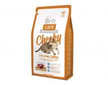 Сухой корм Brit Care Cat 2 кг Cheeky I am Living Outdoor для кошек живущих на улице