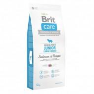 Сухой корм Brit Care GF Junior Large Breed Salmon & Potato 12 kg (для щенков гигантских пород)