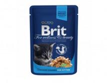 Консервы Brit Premium Cat pouch 100 г курица для котят