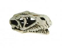 Керамическая декорация Aqua Nova,череп динозавра 14x7x7cm
