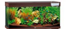 Аквариумный комплект Juwel Rio 180 LED коричневый, 180 литров