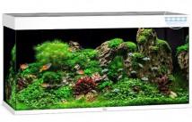 Аквариумный комплект Juwel Rio 350 LED белый, 350 литров