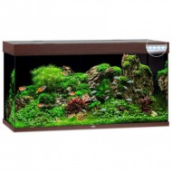 Аквариумный комплект Juwel Rio 350 LED коричневый, 350 литров