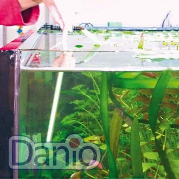JBL (Германия) Скребок с ручкой JBL Blanki Set который не царапает стёкла аквариума, 70х54 мм - Картинка 2
